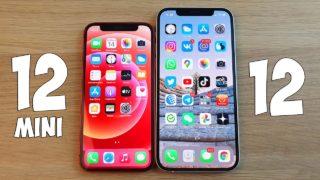 отличия между iPhone 12 и iPhone 12 Mini
